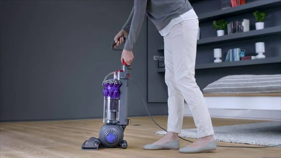 Dyson Ball Animal Review
